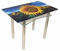 Стол из стекла Ян-1 ТрМр-Б (флора 47)